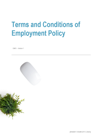 Terms and Conditions of Employment Policy